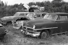 1950s Chryslers & Plymouths in deep weeded junk yard 8 x 10 Photograph