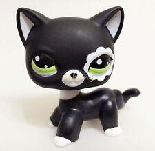 Littlest Pet Shop Black Cat Collection Child Girl Boy Cute Figure Toys Q-lps33E