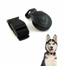 Secret Life Kitty CatCam Cat Cam Dog Collar Pets Eye View Digital Video Camera