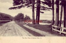 pre-1907 THE FOUR PINES OF BELLOWS FALLS, VT.