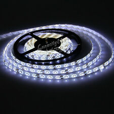 5M 300Leds 3528 SMD Stripe Strip Light White RGB Ribbon Tape Roll Power Remote