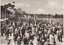 DDR AK Dresden - Reick 1969 ! VE Rennbetrieb Dresden - Pferderennbahn !