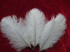 Free shipping 10 pcs Beautiful white ostrich feather 6-8 inches 15-20 cm