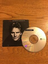 Sting (The Police) Usa Promo Cardboard Cd Single 1991 Why Should I Cry For You ?