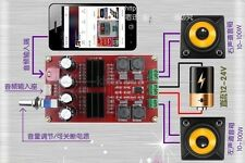 TPA3116 2*100W D2 Dual Channel Digital Audio Amplifier Board 12V-24V amp f car