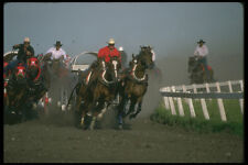 331094 Chuckwagon A4 Photo Print
