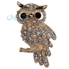 Gorgeous Owl Design White Crystal Inlay Gold Plated Brooch Pin Gift Women