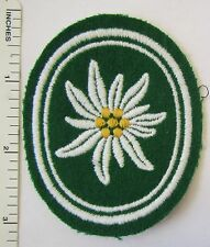 WEST GERMAN ARMY 1 GEBIRGSJAGER MOUNTAIN DIVISION, 1 BRIGADE BUNDESWEHR PATCH