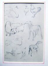 ANIMALS A VARIETY  SUSAN BEATRICE PEARSE PENCIL C1920