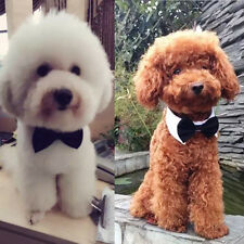 Pet Dog Puppy Cats Toy Bow Tie Necktie Collar Clothes For Wedding Parties Cute