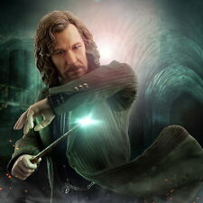 """SA-0009 Harry potter and the order of phoenix, 12"""", 1/6 SIRIUS BLACK"""