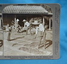 Japanese Stereoview Farmers Spreading Millet To Dry Near Yokohama Japan