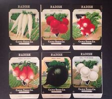 1930-40s Litho Antique Vintage Seed Packet Radish Group Card Seed Co. Pack Mint