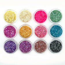 12 PCS Colors UV Gel Glitter Beads Powder Crushed Shell Nail Art Decor Sets Tips