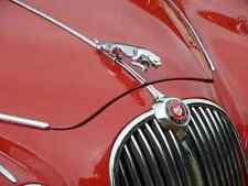 Jaguar 2.4 MK 1 2 Bonnet 2575 Grille A4 Photo Poster