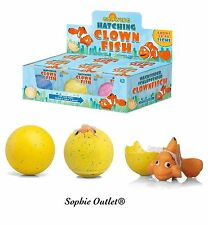 Growing Hatching Clown Fish Egg Easter Activity Grow Eggs Stocking Filler Toys