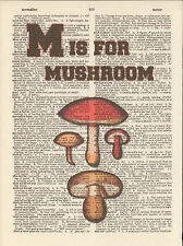 M is for Mushroom Alphabet Altered Art Print Upcycled Vintage Dictionary Page