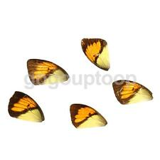 5x Real Orange Butterfly Wings Charms for Earrings Jewel Makings Crafts