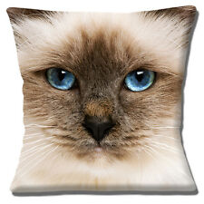 "CUTE RAGDOLL CAT CREAM BROWN BLUE EYES  PHOTO PRINT 16"" Pillow Cushion Cover"