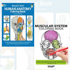 Human Anatomy Colouring Books Collection 2 Books(Muscular System Colouring Book