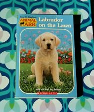 Labrador on the Lawn (Paperback)