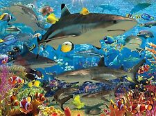 3D Lenticular Art Picture Ocean Scene Sharks Clownfish Coral Reef 39x29cm New