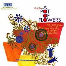 A Pot Of Flowers (CDWIKD 291)