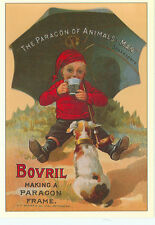 "BOVRIL-BOY WITH UMBRELLA-DOG-CONDENSED FLAVORING-REPRO-4""X6""(DV-341*)"