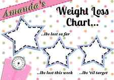 MAGNETIC WEIGHT LOSS Chart/RecorderFREE PEN! SLIMMING WORLD WEIGHT WATCHERS DIET