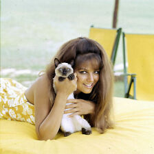 CLAUDIA CARDINALE UNSIGNED PHOTO - 4101 - SEXY!!!!!