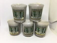 Yankee Candle 5x Silver Birch 49g Votives USA EXCLUSIVE VERY RARE
