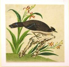 CHINESE RICEPAPER DRAWINGS AN EXOTIC BIRD ON A ROCK WITH FLOWERS C1840
