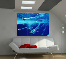 """Penguins Under Water Huge Art Giant Poster Wall Print 39""""x57"""" a541"""