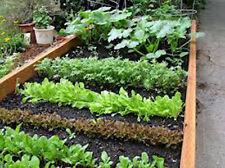 Vegetable Garden Collection, Small, Heirloom, Organic Seeds, 10 Top Varieties