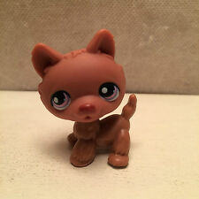 Littlest Pet Shop lot #39 Chocolate Brown Standing Husky Dog w/ Purple Eyes