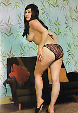 1960s Tall Huge Breasted Pinup Nude in Black lace panties 8 x 10 Photograph