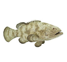 Goliath GROUPER Replica   #265329  FREE SHIP/USA w$25 +SAFARI Products