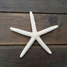 "12Pcs White Finger Starfish 2-4"" Beach Coastal Wedding Decoration Great Crafts"
