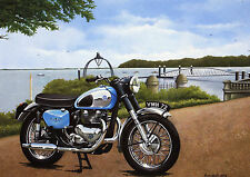 AJS CSR 650  Motorcycle A3 Size Limited Edition Print
