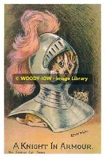 rp9474 - Louis Wain Cat & Dog - A Knight in Armour - photo 6x4