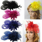 Fascinator Women Flower Feather Hair Accessories Hairpin Clip Hair band
