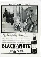 SCOTTISH TERRIER WEST HIGHLAND WHITE Westie Scottie DOG Black & White Whisky Ad