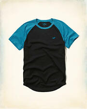 HOLLISTER Must-Have Colorblock Raglan T-Shirt Medium **Brand New w/ Tags** Tee