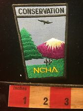 Vtg NCHA Nature CONSERVATION Patch Tree & Snow Capped Mountain 60B9