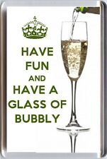 HAVE FUN and DRINK BUBBLY Fridge Magnet UNIQUE Champagne Lover's Christmas Gift