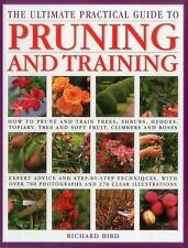 The Ultimate Practical Guide to Pruning and Training : How to Prune and Train...