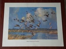 Peter Scott Lithographs of Paintings for Field & Stream 1952-1953