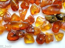 NATURAL polished holed drilled loose beads Baltic AMBER 20 g (180 - 200 pcs )