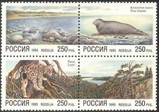 Russia 1995 Seal/Lynx/Nature/Cats/Wildlife/Conservation/Environment blk (n33616)