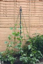 Garden Maypole Climbing Plant Support Outdoor Black Vegetable Plants Stake